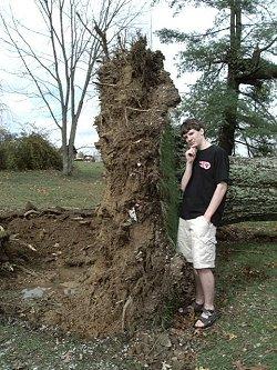 Tornado Vs Trees Jegsworks