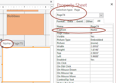 Forms: Tab Control | Forms & Reports | Jan's Working with